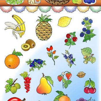 07-web-500-ovocie-kopie