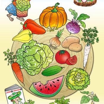 08-web-500-zelenina-