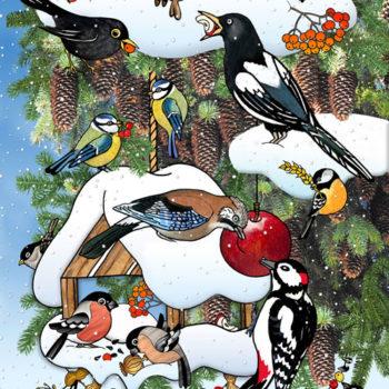 28-web-500-druhy-vtákov-