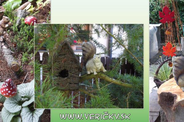web vever-1